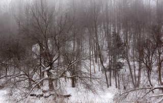 Winter landscapes 0007