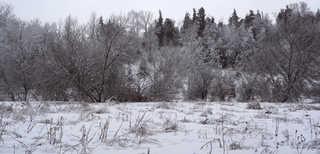 Winter landscapes 0008
