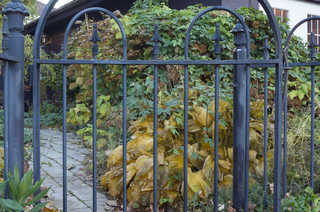 Metal fences and gates 0005