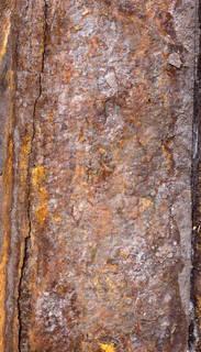 Rusty metal 0097