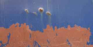Rusty metal 0153