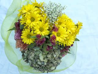 Flowers 0041