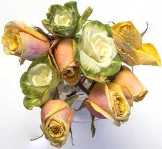 Flowers 0069