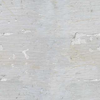 Texture of /plaster/smooth-plaster/smooth-plaster_0015_01_S