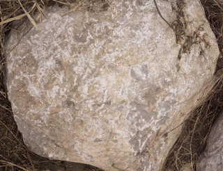 Boulders 0116