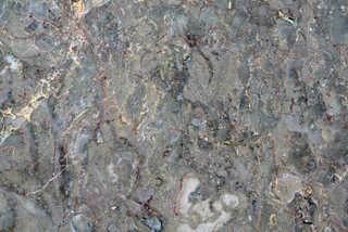 Marble and quartz 0023