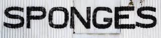 Public signs 0074