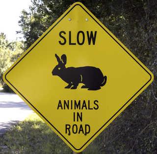 Traffic signs 0153
