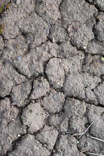 Cracked mud terrain 0001