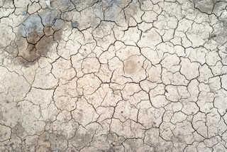 Cracked mud terrain 0003