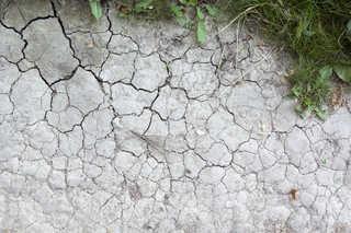 Cracked mud terrain 0006