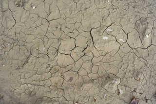 Cracked mud terrain 0008
