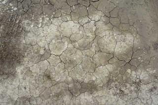 Cracked mud terrain 0009