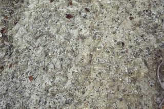 Cracked mud terrain 0011