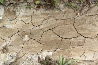 Cracked mud terrain 0017