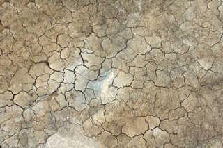 Cracked mud terrain 0023