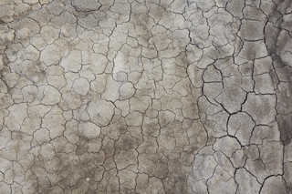 Cracked mud terrain 0024