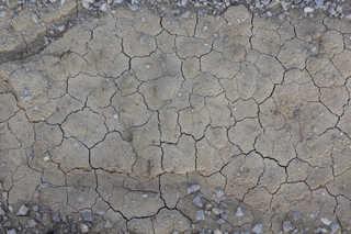 Cracked mud terrain 0025