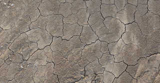 Cracked mud terrain 0028