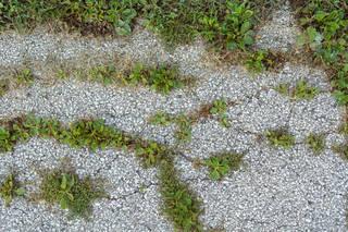 Damaged asphalt terrain 0006