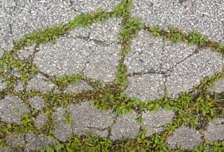Damaged asphalt terrain 0010