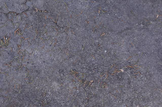 damaged-asphalt-terrain_0015 texture
