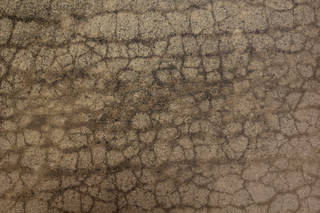 Damaged asphalt terrain 0037