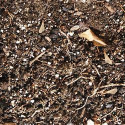 Dirt and Mud Terrain Category