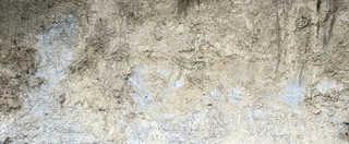 Dirt and mud terrain 0006