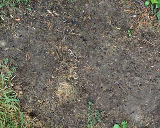 Dirt and mud terrain 0012
