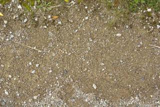 Dirt and mud terrain 0021
