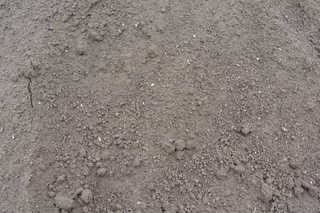 Dirt and mud terrain 0022