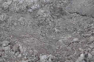 Dirt and mud terrain 0044