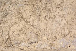 Dirt and mud terrain 0045