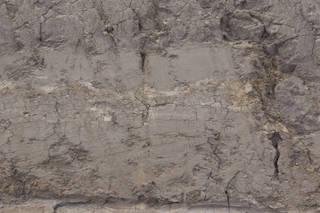 Dirt and mud terrain 0052