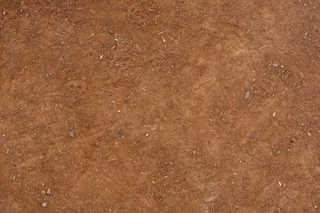 Footprints and animal tracks 0006