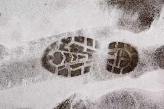 Footprints and animal tracks 0034