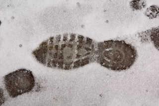 Footprints and animal tracks 0035