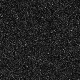 Texture of /terrain/forest-floor-terrain/forest-floor-terrain_0016_02_S_SPEC