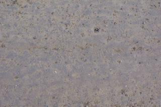 Gravel terrain 0055