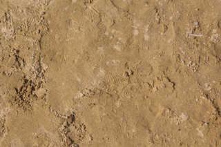 Sand terrain 0011