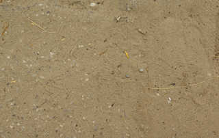Sand terrain 0014