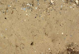 Sand terrain 0016