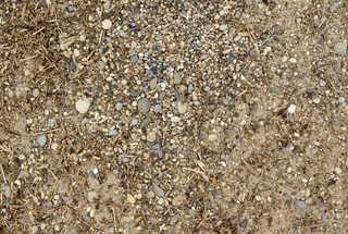 Sand terrain 0017