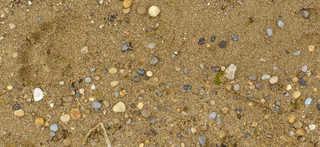 Sand terrain 0018