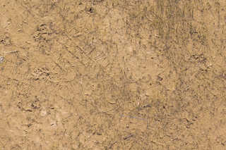 Sand terrain 0028