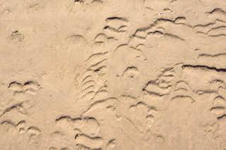Sand terrain 0035