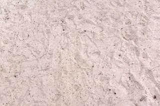 Sand terrain 0044