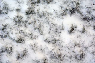 Snow terrain 0008