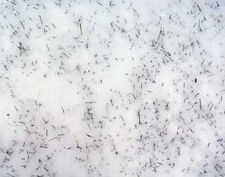 Snow terrain 0009